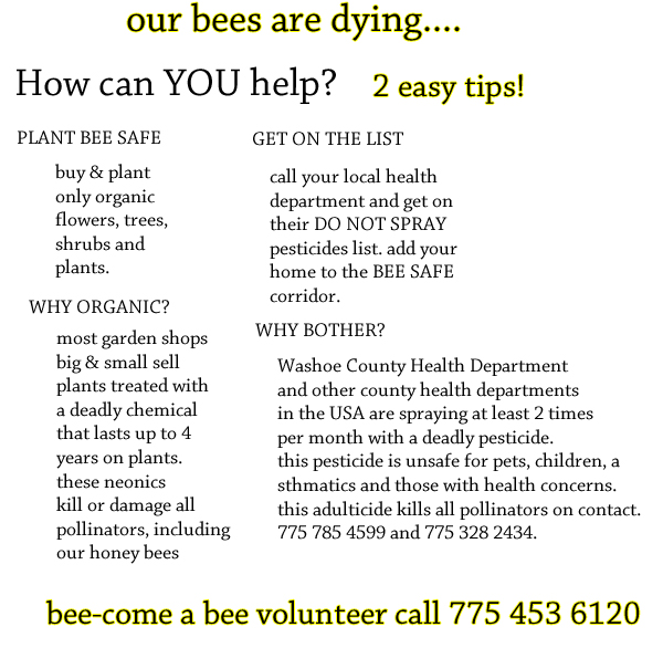save bees reno nv