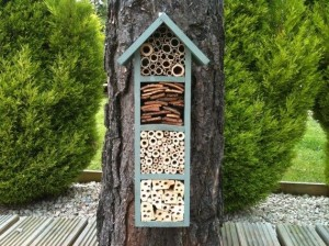 bee hotels reno