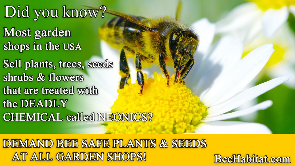 Garden shops sell bee killing plants