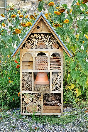 Bee safe pollinator garden bee habitat for How do you start building a house